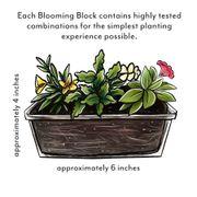 Blooming Block Kwik Kombos™ Walk of Stars™ Alternate Image 5
