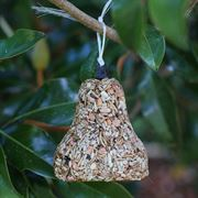 Bugs, Nuts & Fruit Bell - Bird Feed image