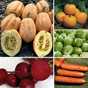 Ultimate Park Seed Cool Season Vegetable Collection Thumb