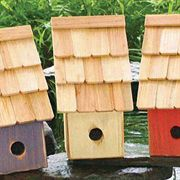 Fruit Coop - Birdhouse for Wrens