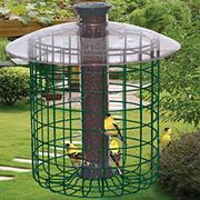 Just-for-Songbirds Bird Feeder