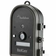 Motion Activated BirdCam