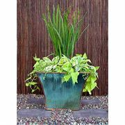 Mod Planter - Rustic Finish