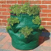 Bosmere Strawberry/Herb Growin Bag