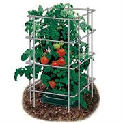 48 inch Park's Wire Tomato Pen - Pack of 3 image