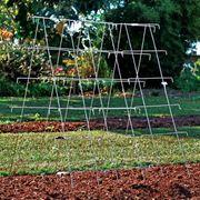 Park's Wire Cucumber Support Alternate Image 2