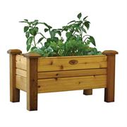 Western Red Cedar Planter Boxes Safe Finish Medium