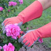 Womens Pink Guardian Rose Gloves