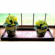 Venetian Bronze Boot Tray - Stars Design