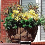 Newport Corner Rail Planter