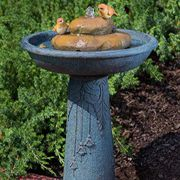 Birdbath Outdoor Fountain