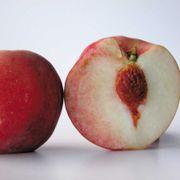 Prunus White Delight Peach Alternate Image 1