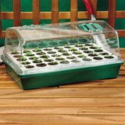 Parks Original Bio Dome with 40 Jumbo Cells - Lime