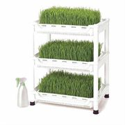 Wheatgrass Grower Shelves