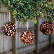 Seed & Nut Ornament Balls (Set/3)