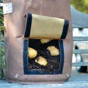 Lightweight Potato Eco-Planter