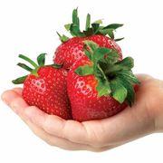 Park's Whopper Strawberry Thumb