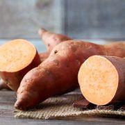 Georgia Jets Sweet Potato Plant