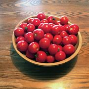 Red Racer Hybrid Tomato Seeds