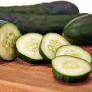 Gateway Hybrid Cucumber Seeds image