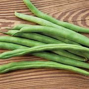 Park's Whopper Bush Bean Seeds Thumb