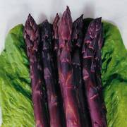 Sweet Purple Asparagus Seeds