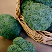 Castle Dome Hybrid Broccoli Seeds image