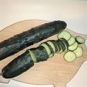 Jumbo Hybrid Cucumber Seeds