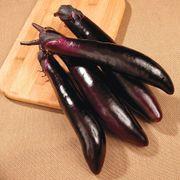 Shikou Hybrid Eggplant Seeds Alternate Image 1