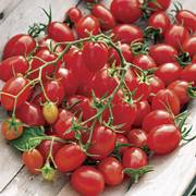 Fantastico Hybrid Grape Tomato Seeds image