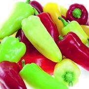 Pretty N Sweet Hybrid Ornamental Pepper Seeds Alternate Image 1
