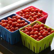 Candyland Red Hybrid Tomato Seeds Alternate Image 2