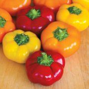 Hungarian Stuffing Blend Pepper Seeds