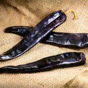 Durango Guajillo Hybrid Pepper Seeds image