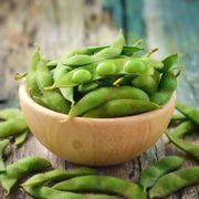 Chiba Green Organic Soybean Seeds Thumb