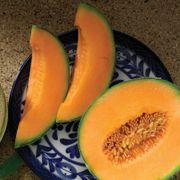 Melon Da Vinci Alternate Image 1