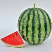 Mambo Hybrid Watermelon Seeds Thumb