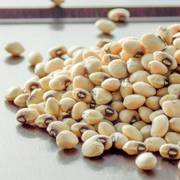Cow Pea Coronet (heirloom) (P) Pkt image