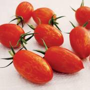 Tomato Red Torch image