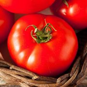 Fireworks Organic Tomato Seeds Thumb