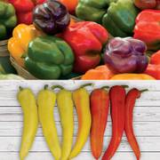 Parks Sweet Pepper Collection