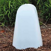 Large Collapsible Plant Protector - Set of 2