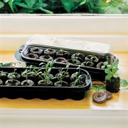 Jiffy-7 Windowsill Greenhouse and Refills image