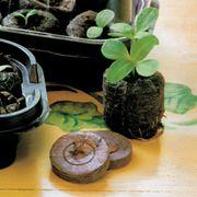 Jiffy® Windowsill Greenhouse and Jiffy-7® Refills Alternate Image 1