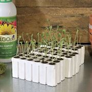 Park-Starts® Seed Starters