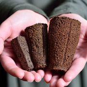 Bio Dome Refill Sponges Alternate Image 1
