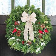 Cardinal Noble Fir Evergreen Wreath