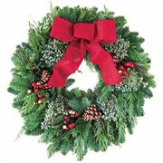 Woodlands Evergreen Noble Fir Wreath