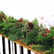 Cardinal Noble Fir Evergreen Garland