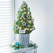 Northern Lights Tabletop Christmas Tree - 1-Gallon